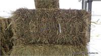 Hay & Grain Online Auction 6-2-21