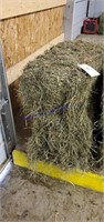 Small Animal & Exhibition Stock Online Auction 6-4-21