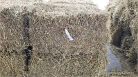 Hay & Grain Online Auction 6-16-21