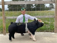 2021 Redwood Acres Livestock Auction